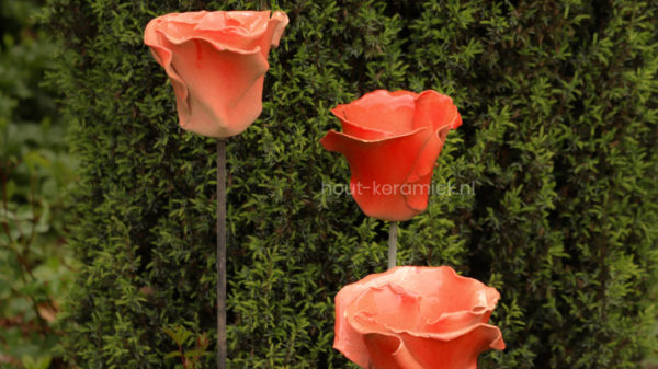 rozen rood op stok
